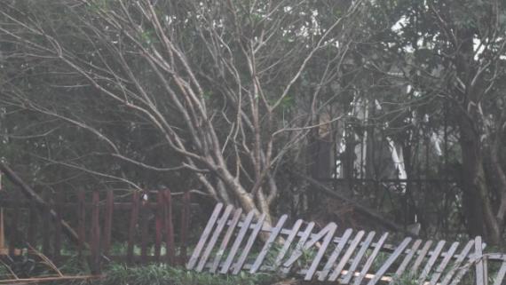 """台风""""黑格比""""登陆浙江乐清 最大风力13级"""