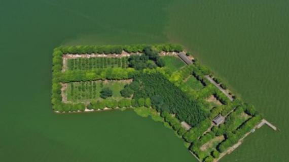 湖北第一大湖洪湖退出警戒水位 应急响应下调