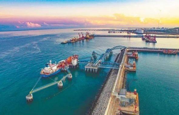 一图读懂:党建引领海南自贸港建设意见
