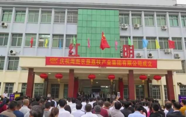 海垦红明荔枝产业集团揭牌成立 擦亮海南热带农产品品牌