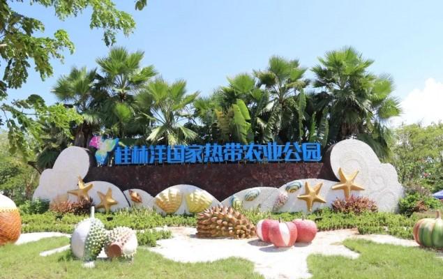 招募   大年初六跟我们一起玩转桂林洋国家热带农业公园!