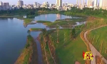 """新时代 新气象 新作为:海口加快湿地保护与修复 畅想""""湿地之城""""美好愿景"""