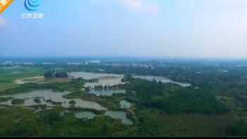 """海口:新增两个国家级和五个省级湿地公园 迈向""""湿地城市"""""""
