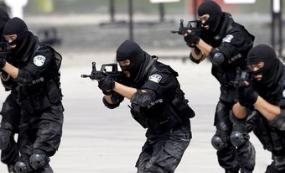 利比亚最高国家委员会主席:利比亚反恐需要国际社会参与