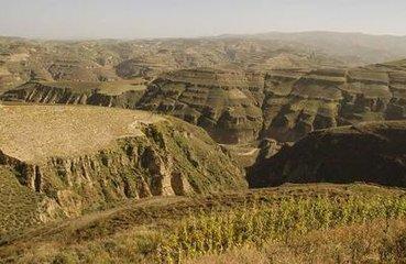 中国黄土高原200多万年前可能已有古人类