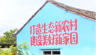 """昌江开展社会文明大行动 打造""""山海黎乡大花园"""""""