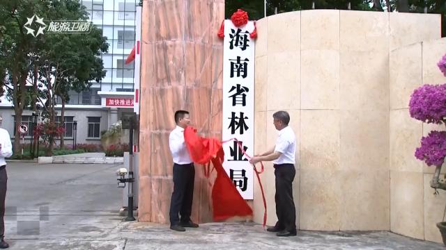 海南机构改革:省林业局挂牌 省地方金融监督管理局组建
