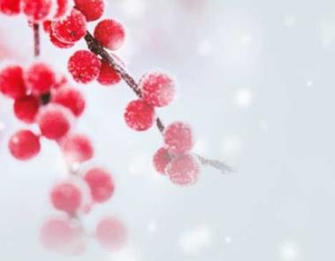 """【文脈頌中華】江水初凝 看""""立冬""""藏著的中華文化"""