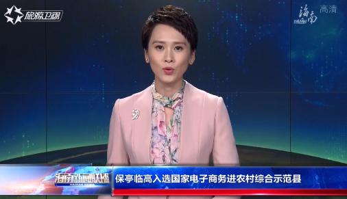 保亭临高入选国家电子商务进农村综合示范县