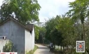 村里停水半个月 54户居民用水难