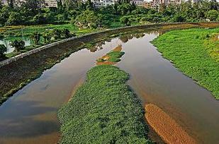 海口美舍河、五源河入选全国黑臭河流生态治理十大案例
