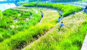 山东济南章丘区:产城融合促进动能转换