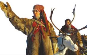 延续萨米人传统的北极养鹿人