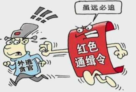 """中国过半""""红通人员""""2018年被引渡遣返 专家分析"""