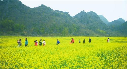 23万人次;秦岭野生动物园接待游客约10.44万人次.