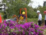 海南:6月底前115条省管县道移交所辖市县管理 并建立起农村公路管理养护路长制