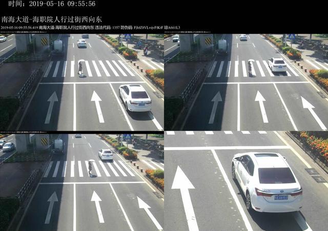 海口曝光台:看看不礼让行人车辆有没有你?
