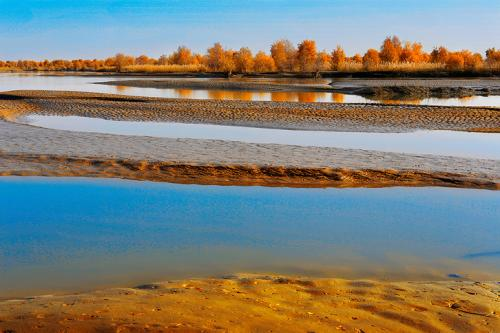 塔里木河重生记