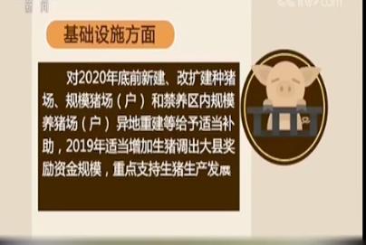 多部门出台措施 支持生猪生产