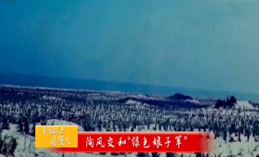 """""""壮丽70年 奋斗新时代""""大型系列报道今起推出"""