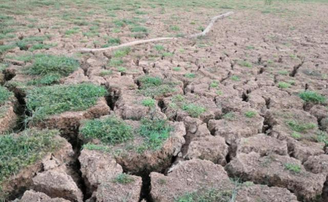南方部分地區為何持續大旱?