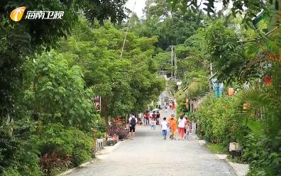 推进乡村振兴战略:海南20278个具备条件的自然村全部通硬化路 率先在全国各省区中实现目标