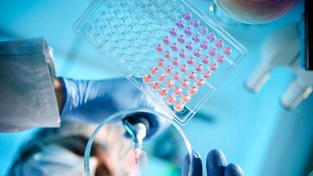 世衛總干事:專家小組已前往中國 協助應對新冠肺炎疫情