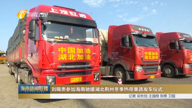 刘赐贵参加海南驰援湖北荆州冬季热带果蔬发车仪式