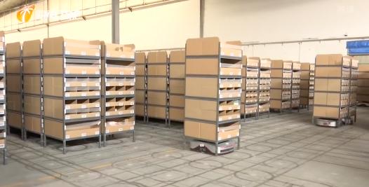 海南省調研組調研港口機場和物流企業復工復產