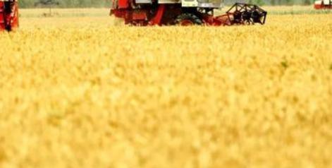 农业农村部:防止化肥价格不合理上涨