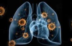研究顯示新冠病毒去年年底可能已全球傳播