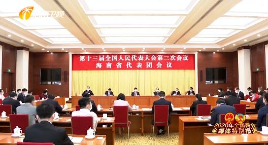 海南代表团审议政府工作报告 肖捷 刘赐贵 沈晓明发言 张业遂出席