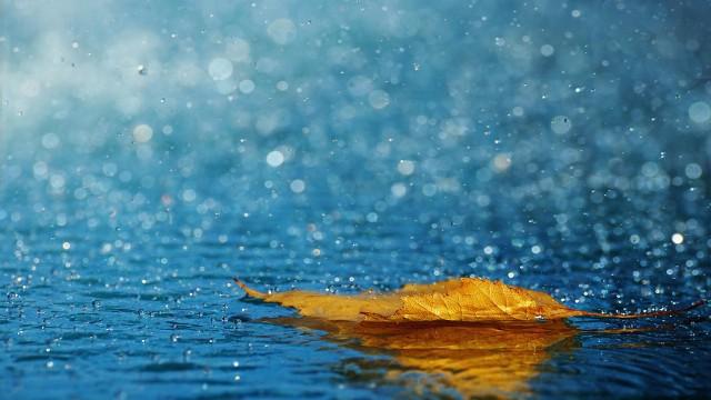 海南发布暴雨三级预警!16日这6个市县将有强降雨
