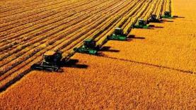 连年丰收仍要倡导节约粮食