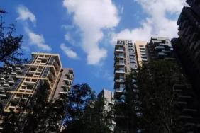 """首部住房租赁条例征求意见 """"高进低出""""等将受管控"""