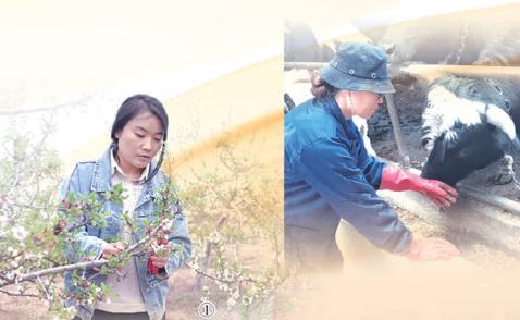 全国1700万高素质农民活跃在乡村振兴一线:知识进乡村 技术富乡亲