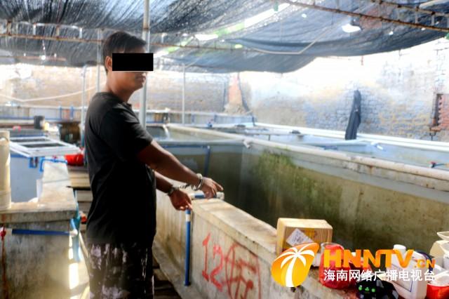 作案30余次 盗窃石斑鱼价值10万余元 陵水一犯罪嫌疑人落网