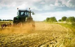 世界自然基金会:每年全球约有25亿吨粮食未被食用