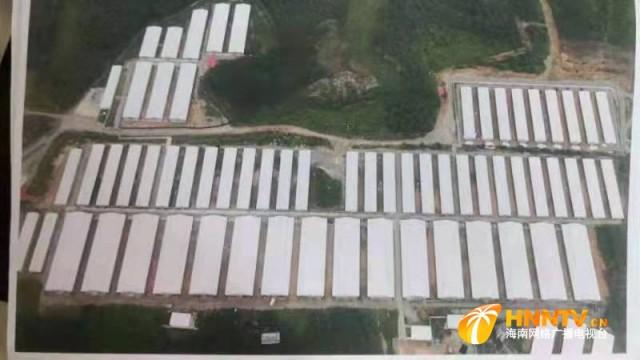 海南澄迈:一纸检察建议 49万元植被恢复费收缴到位
