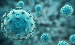 专访:新冠病毒溯源是科学问题而非政治问题——访韩国韩中全球协会会长禹守根